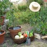 jardiner bio 5