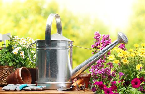 astuces jardinage bien tre au naturel. Black Bedroom Furniture Sets. Home Design Ideas