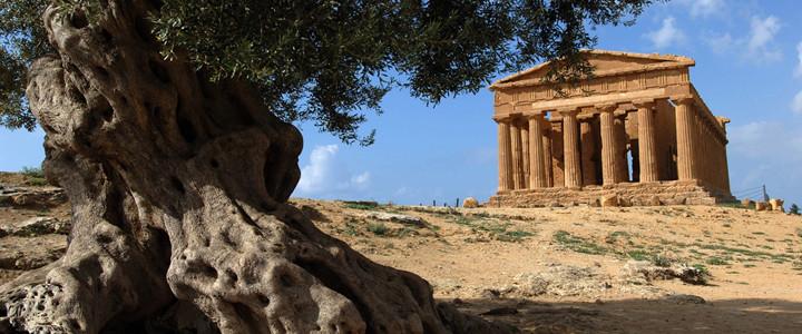 olivier et histoire