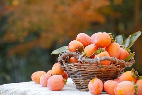 persimmonkaki en panier