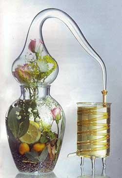 Fabrication huile essentielle