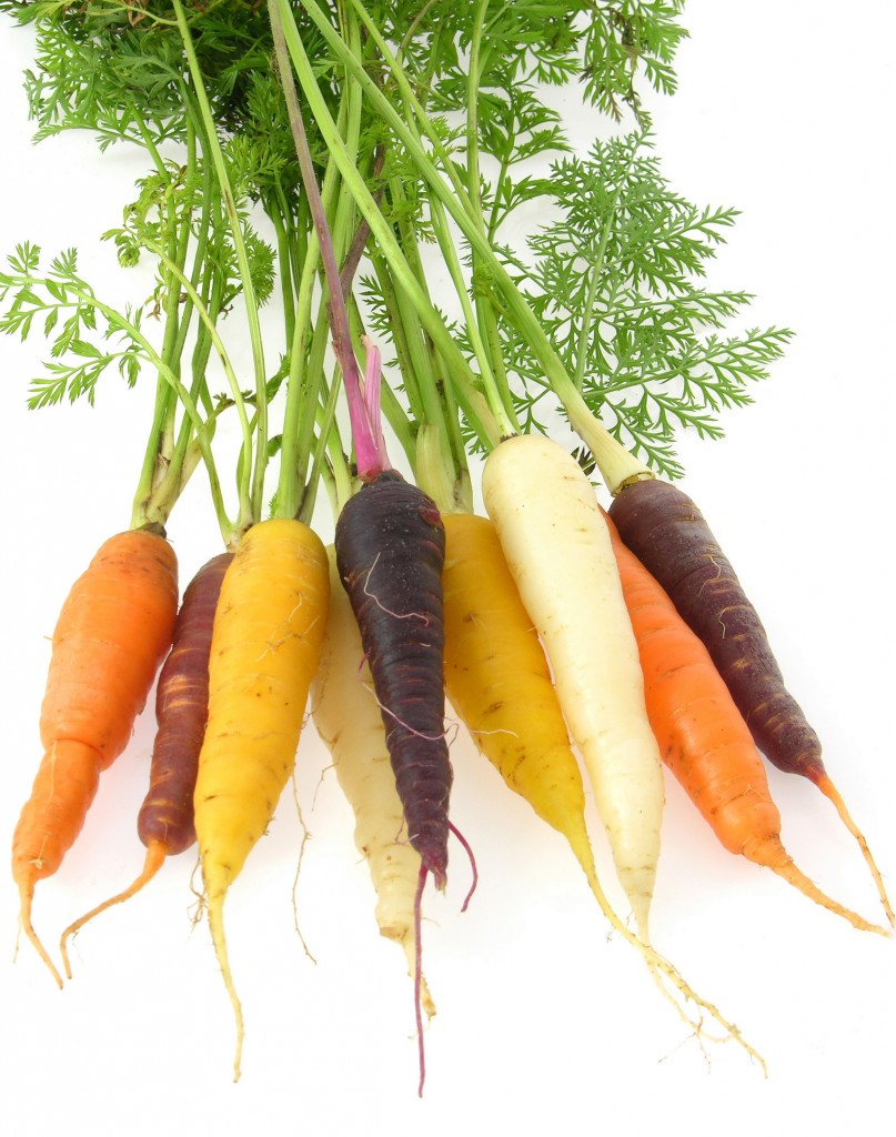 bunch of different coloured carrots