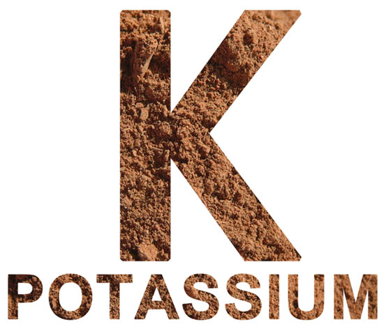health-benefits-of-potassium