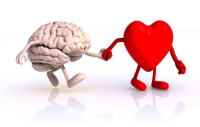 coeur et cerveau intro