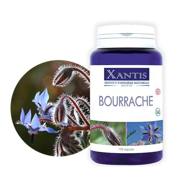 bourrache-huile-vierge-bio xantis