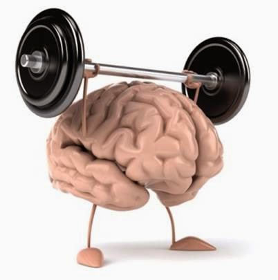 cerveau faire progreser