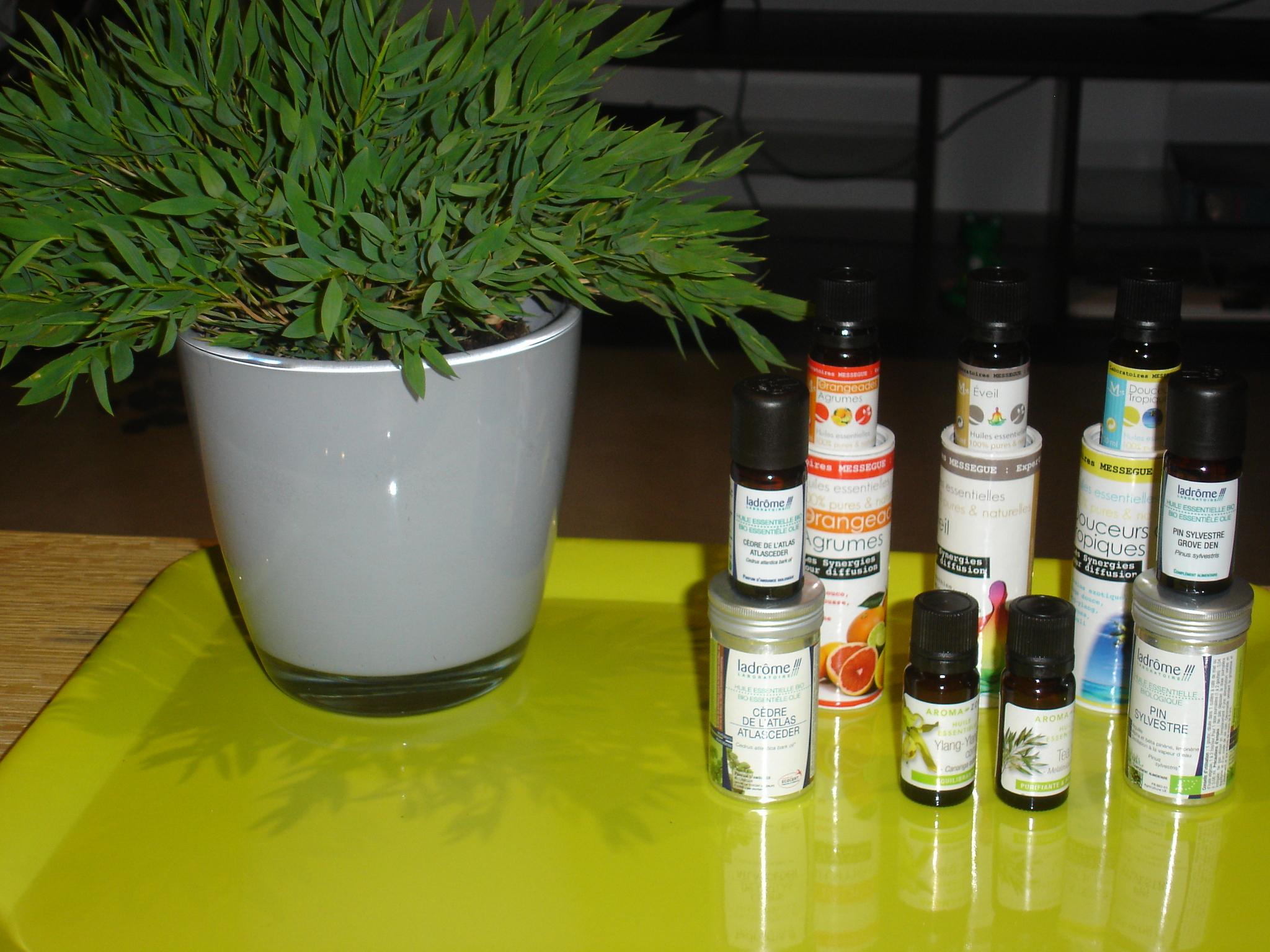 Huiles essentielles conseils pour diffuser les huiles essentielles dans la maison bien tre - Huiles essentielles a diffuser dans la maison ...