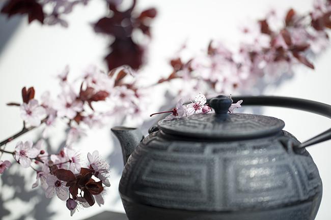 ayurveda-tea-2