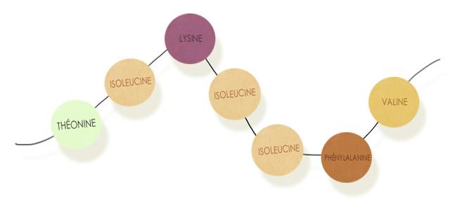 compl ments alimentaires quelle place pour les compl ments alimentaires pendant une cure. Black Bedroom Furniture Sets. Home Design Ideas