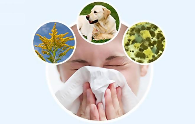 allergie c'est quoi