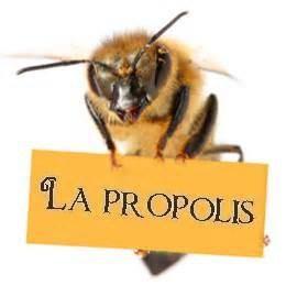 abeille-et-propolis